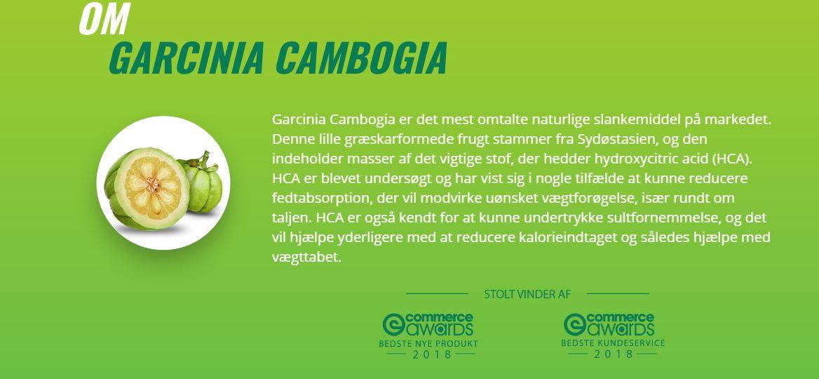 healthy life garcinia